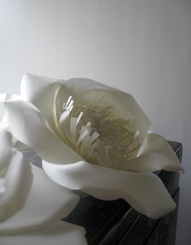 paper flower 1