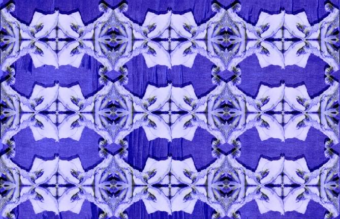 toile erotique carolean blue copy