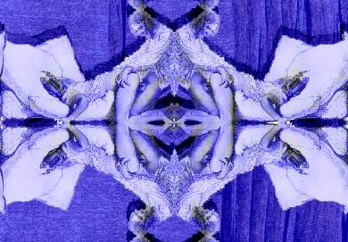 toile erotique carolean blue detail
