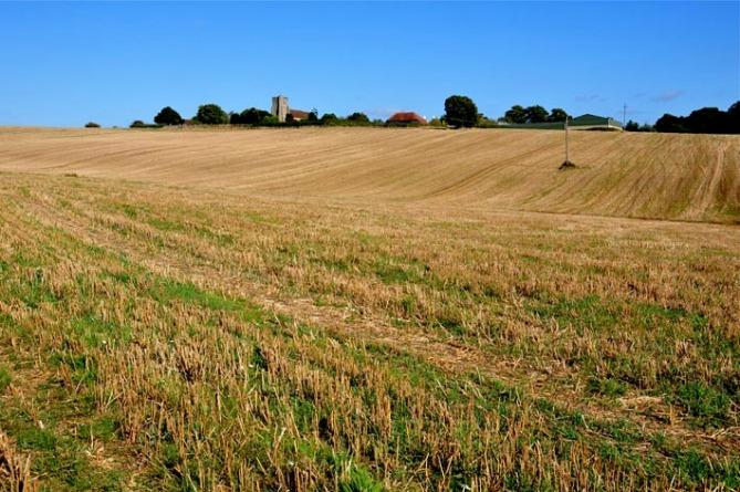 walk across the fields DSC_1360