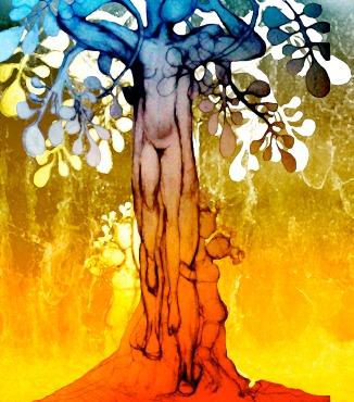 Tree spirit family orange SF