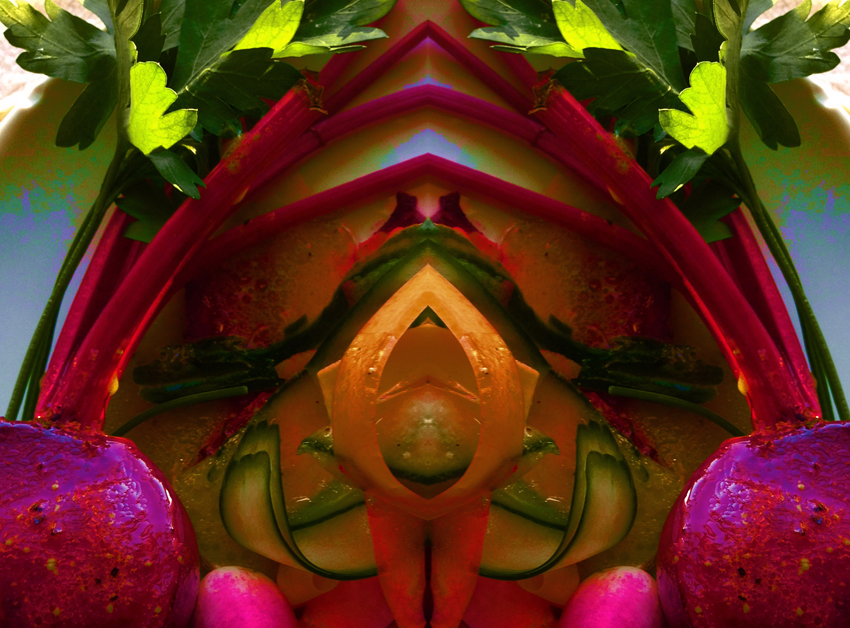 beetrool vegetable.arch