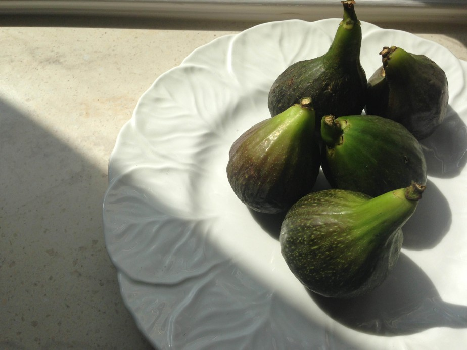 first plate of figs this year