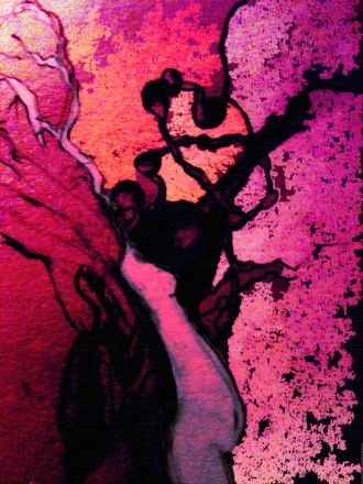 magenta mother tree SF