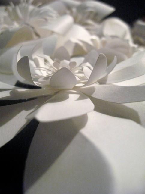 Papercut garden Sunday 1