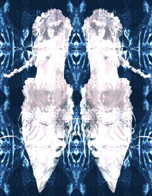 Shoe 3 white pair blue b-ground