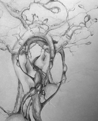 dreaming tree pencil sketch